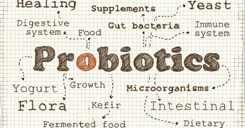 Probiotics for Your Teeth?